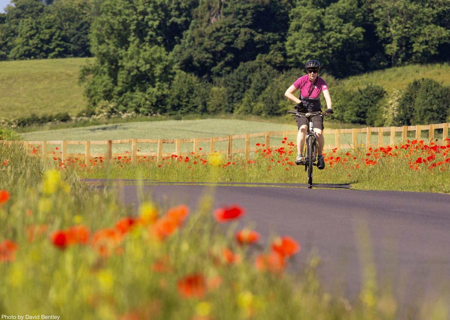 Self-Guided-Leisure-Cycling-Holiday-Hadrians-Cycleway-UK-cycle-Corbridge.jpg - UK - Hadrian's Cycleway - 4 Days Cycling - Self-Guided Leisure Cycling Holiday - Leisure Cycling
