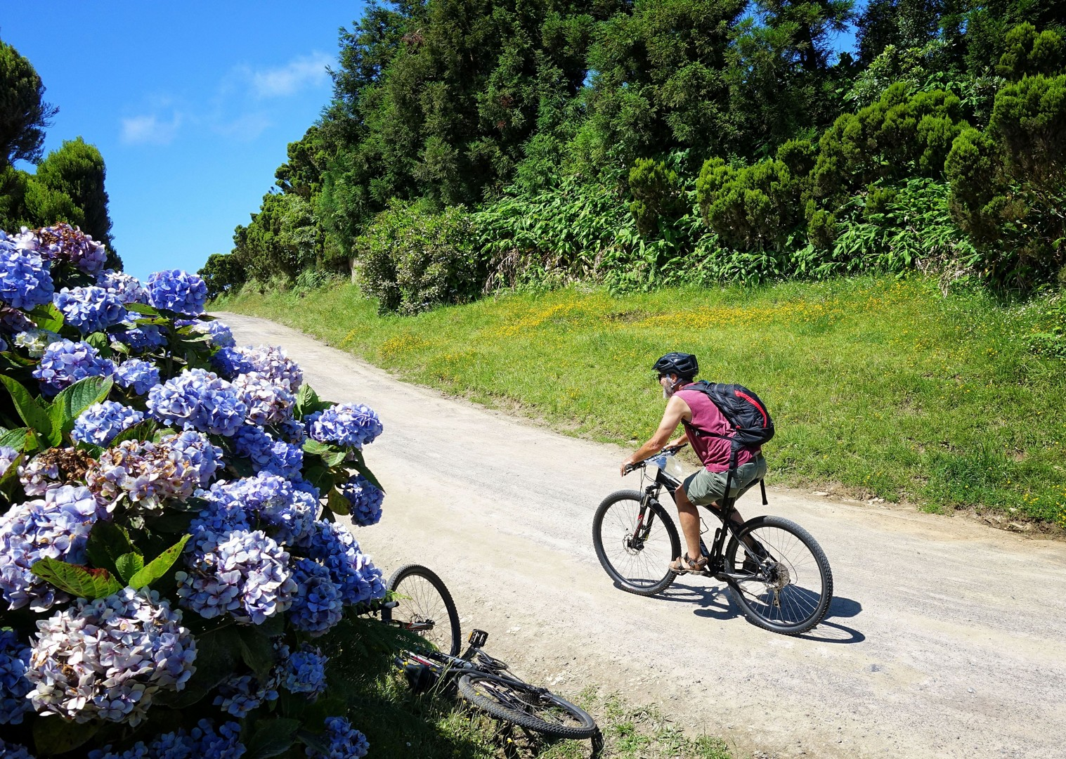self-guided-leisure-cycling-in-tronqueira-forests.jpg - The Azores - Islands and Volcanoes - Self-Guided Leisure Cycling Holiday - Leisure Cycling