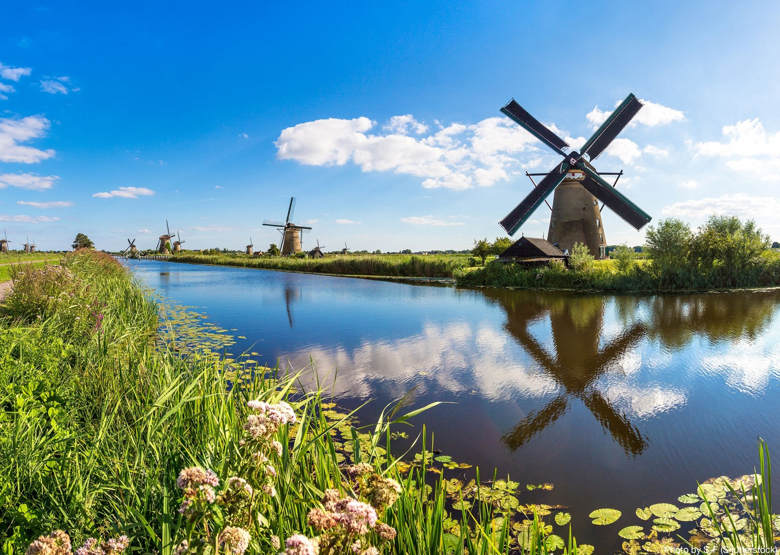 exploring-the-kinderdijk-windmills-and-canal-by-bike-barge-holiday.jpg - Holland - Green Heart - Bike and Barge Holiday - Leisure Cycling
