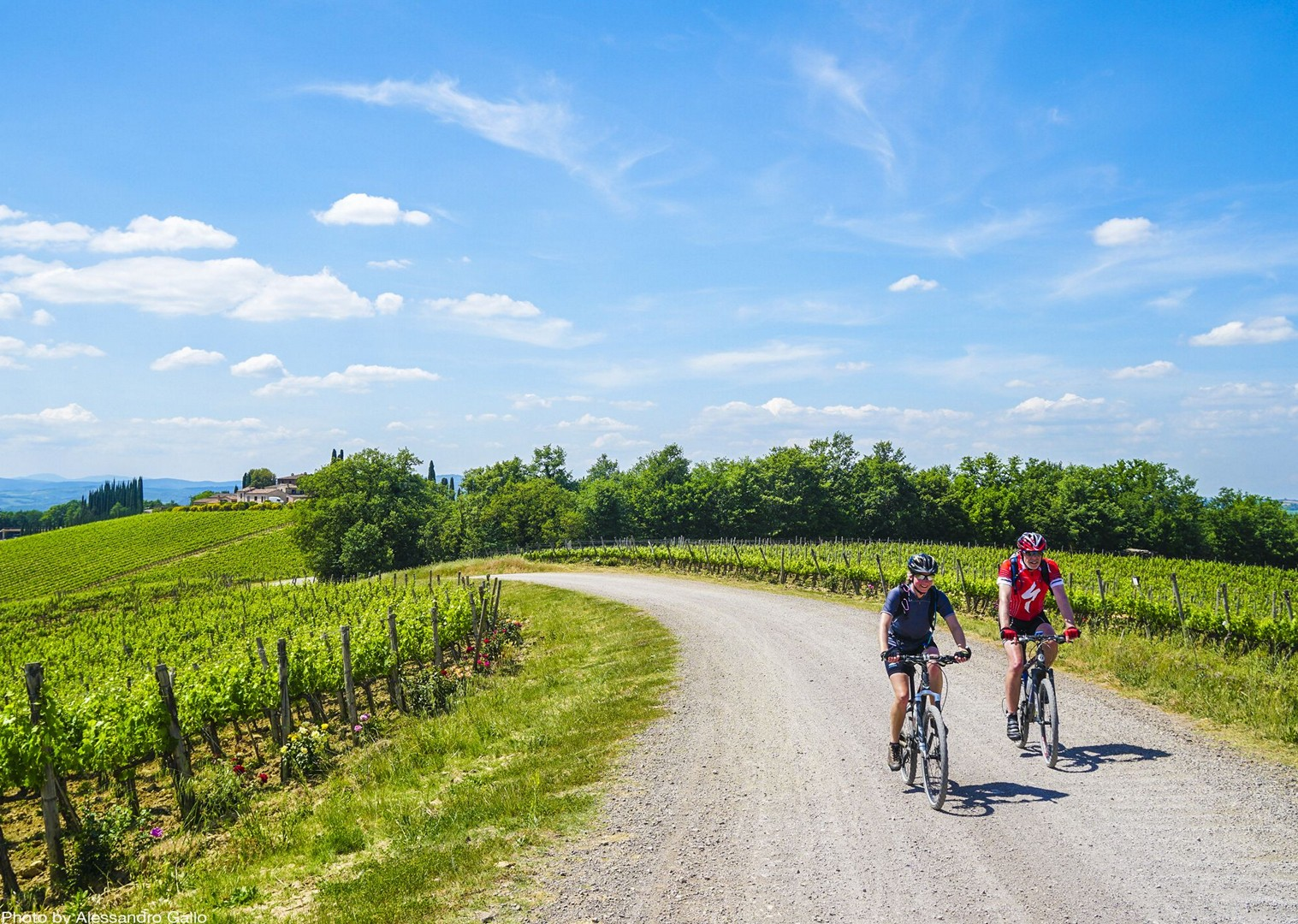 rolling-hills-of-tuscany-countryside-by-bike.jpg - Italy - Classic Tuscany - Self-Guided Leisure Cycling Holiday - Leisure Cycling