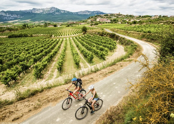 Northern Spain - Ride Rioja - Self-Guided Leisure Cycling Holiday Image