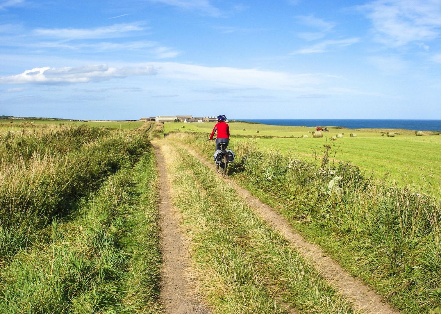 uk-coast-northumberland-cycling-rural-fields-tour-self-guided.jpg - UK - Northumberland - Alnmouth - Self-Guided Leisure Cycling Holiday - Leisure Cycling