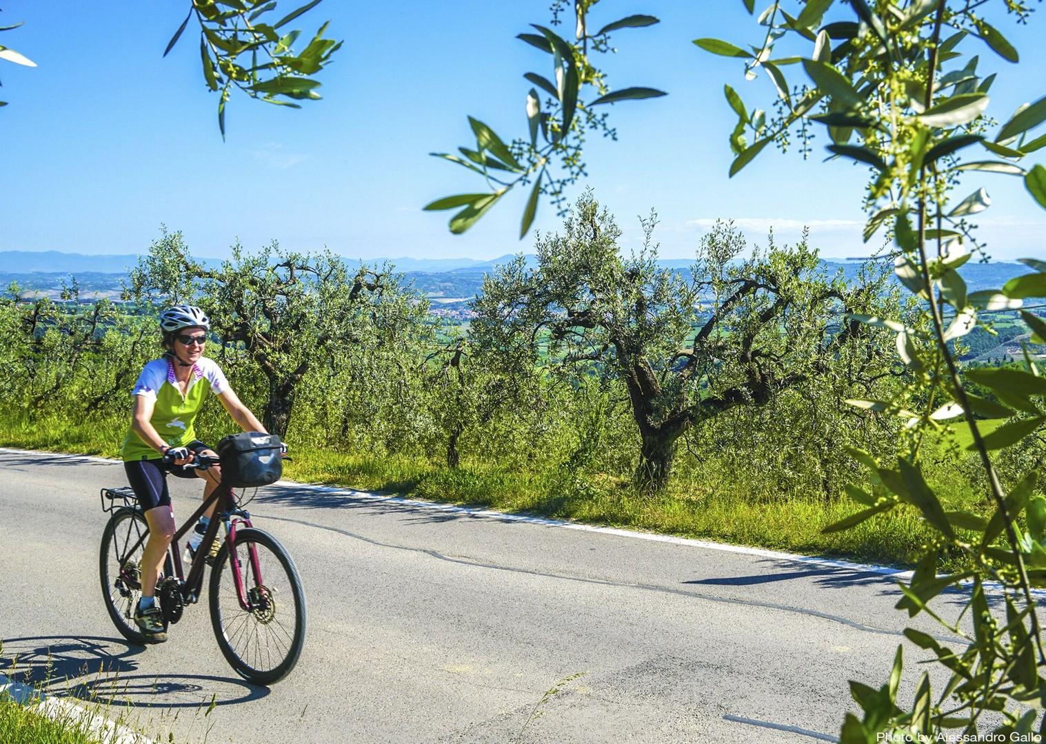 pisa-to-florence-leisure-holiday-saddle-skedaddle-italy.jpg - Italy - Tuscany - Pisa to Florence - Self-Guided Leisure Cycling Holiday - Leisure Cycling