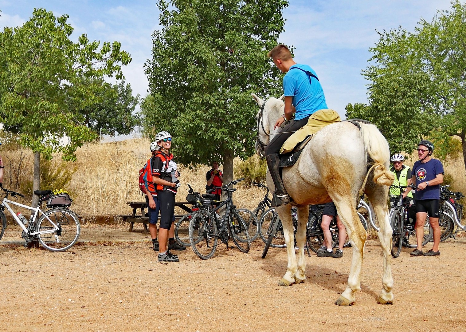 granada-to-seville-guided-leisure-cycling-holiday-in-spain.jpg - Spain - Granada to Seville - Leisure Cycling