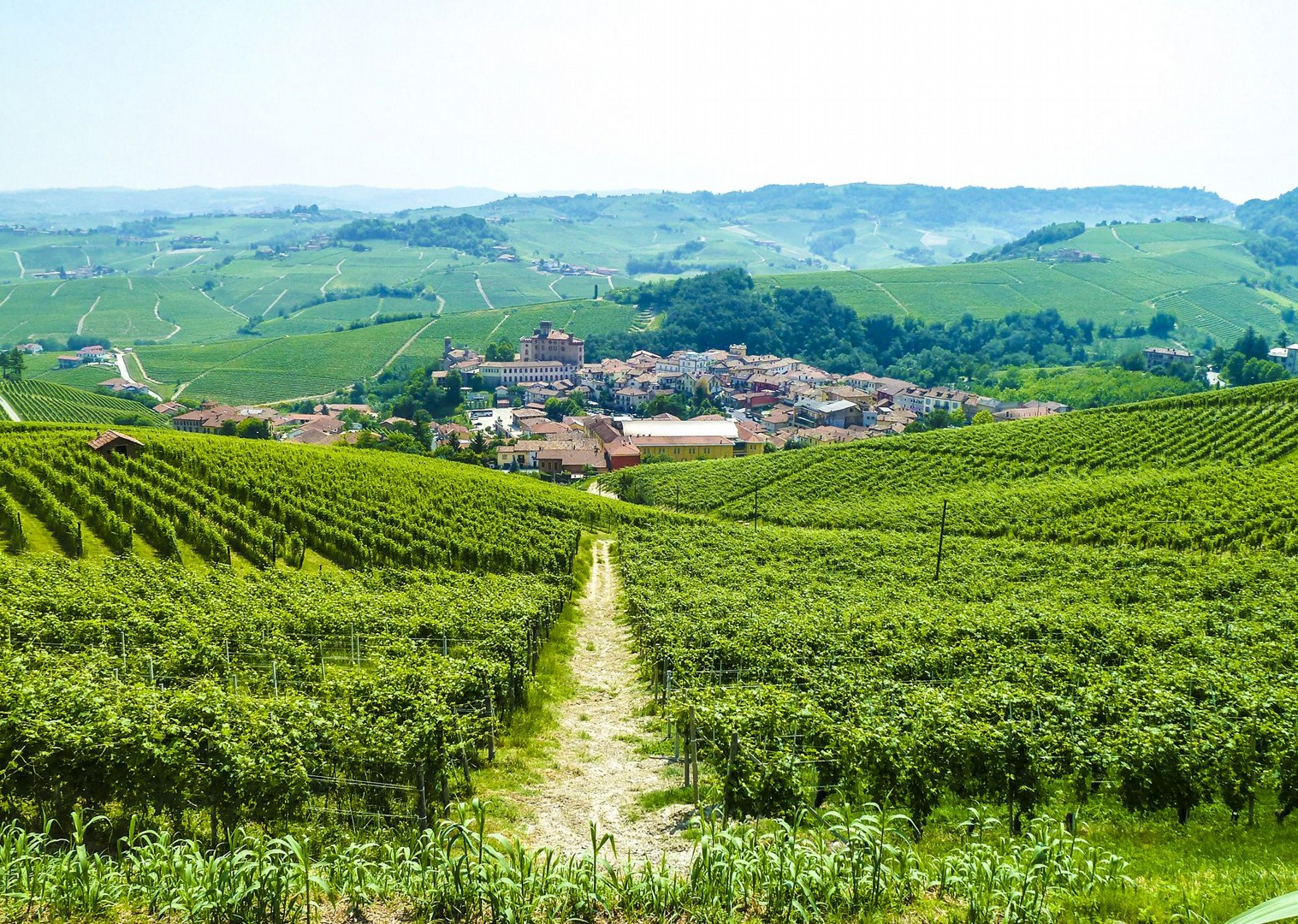 wine-country-easy-cycling-ebike-electric-bike-tour-holiday-italy-piemonte.jpg - Italy - Piemonte - Vineyards and Views - Self-Guided Leisure Cycling Holiday - Leisure Cycling