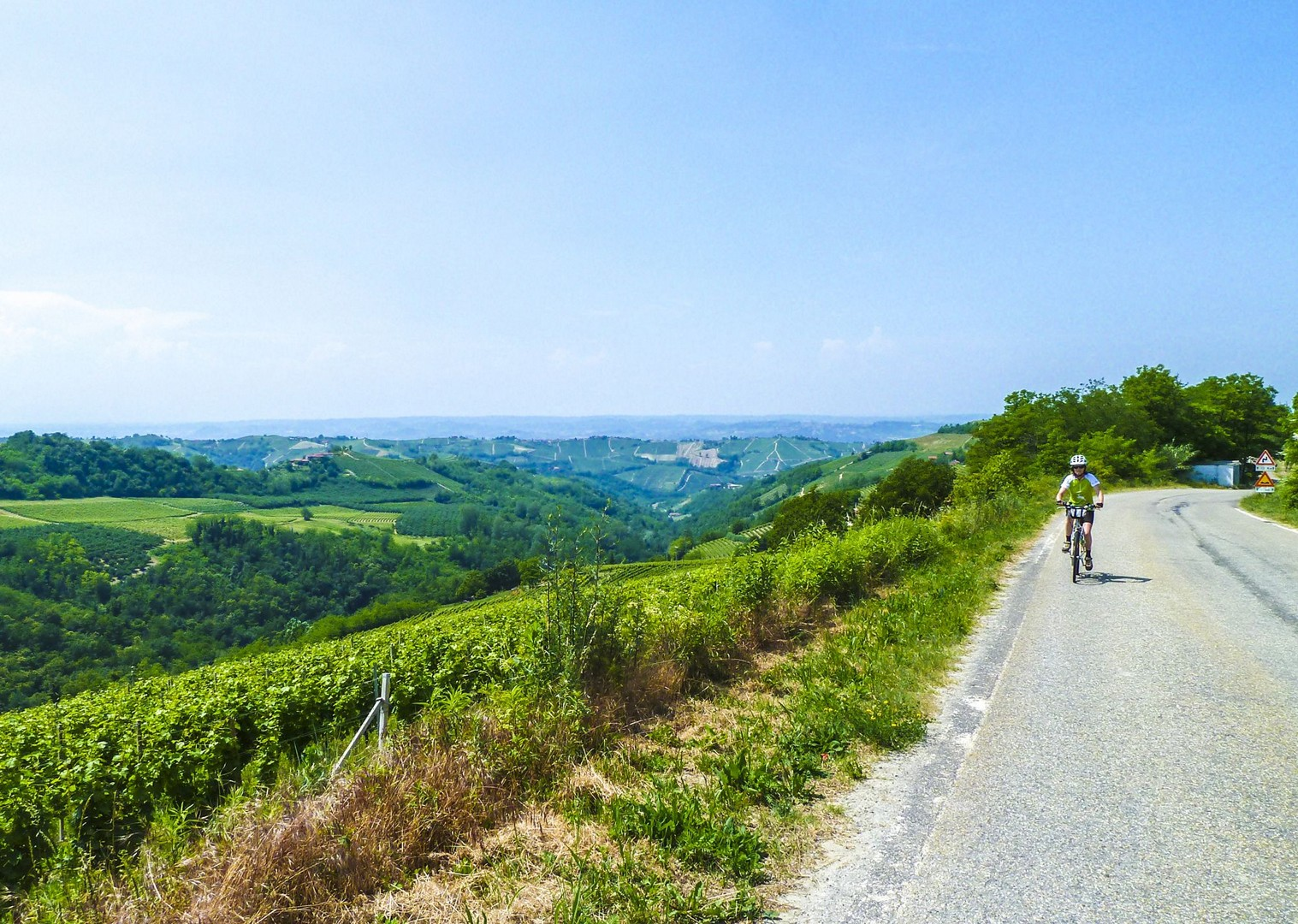 wine-tour-biking-barolo-barbaresco-nebbiolo-moscati-vineyard-culture-italy.jpg - Italy - Piemonte - Vineyards and Views - Self-Guided Leisure Cycling Holiday - Leisure Cycling