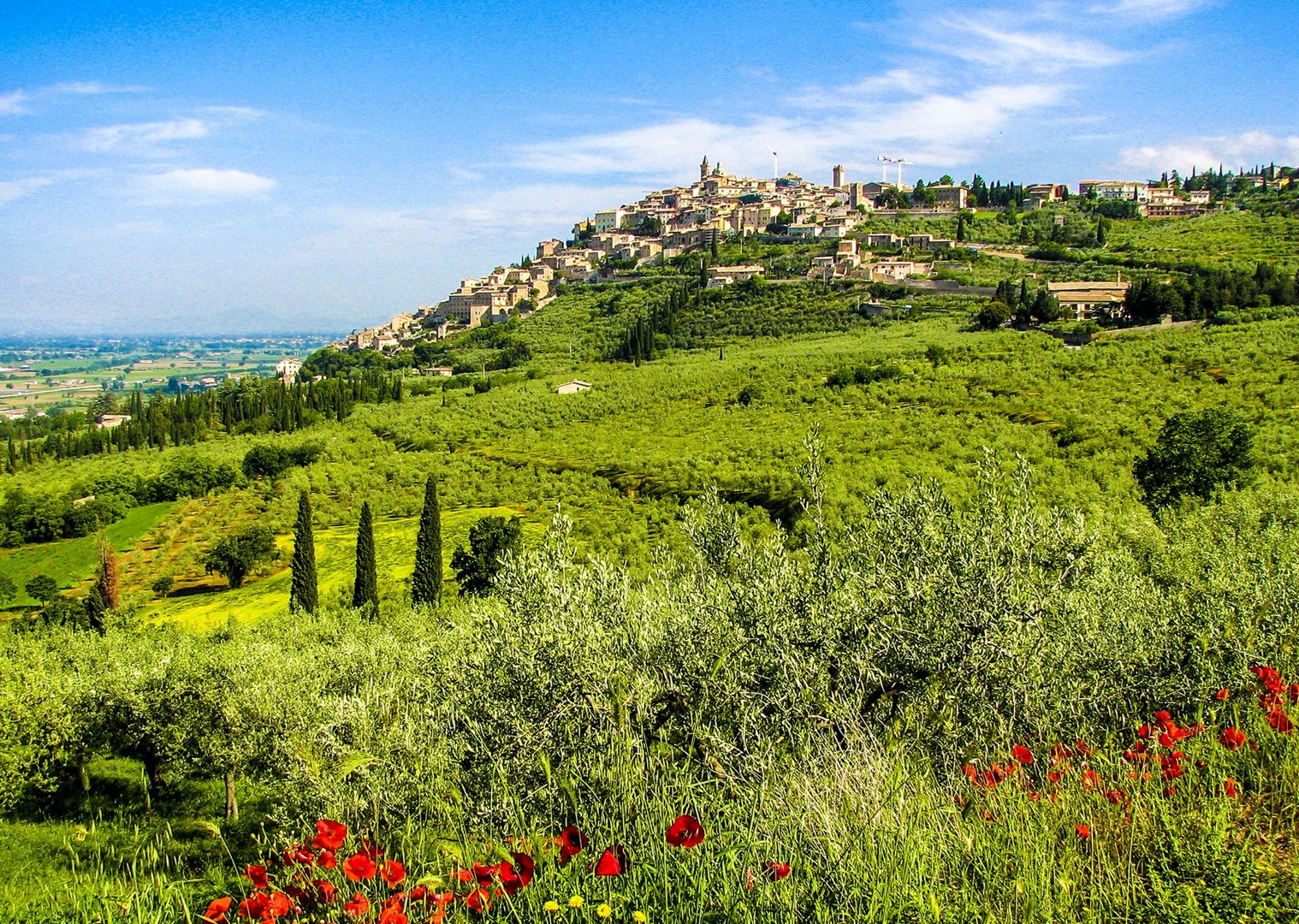 zicht op Trevi.jpg - Italy - Green Valley of Umbria - Self-Guided Leisure Cycling Holiday - Leisure Cycling