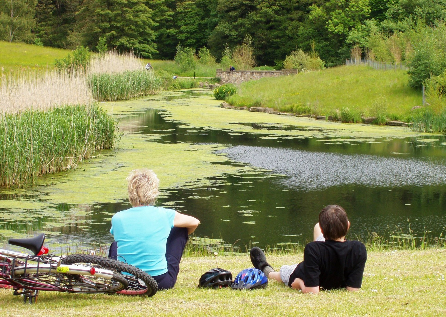 relax-pond-country-cycling-hadrians-cycleway.jpg - UK - Hadrian's Cycleway - 6 Days - Family Cycling
