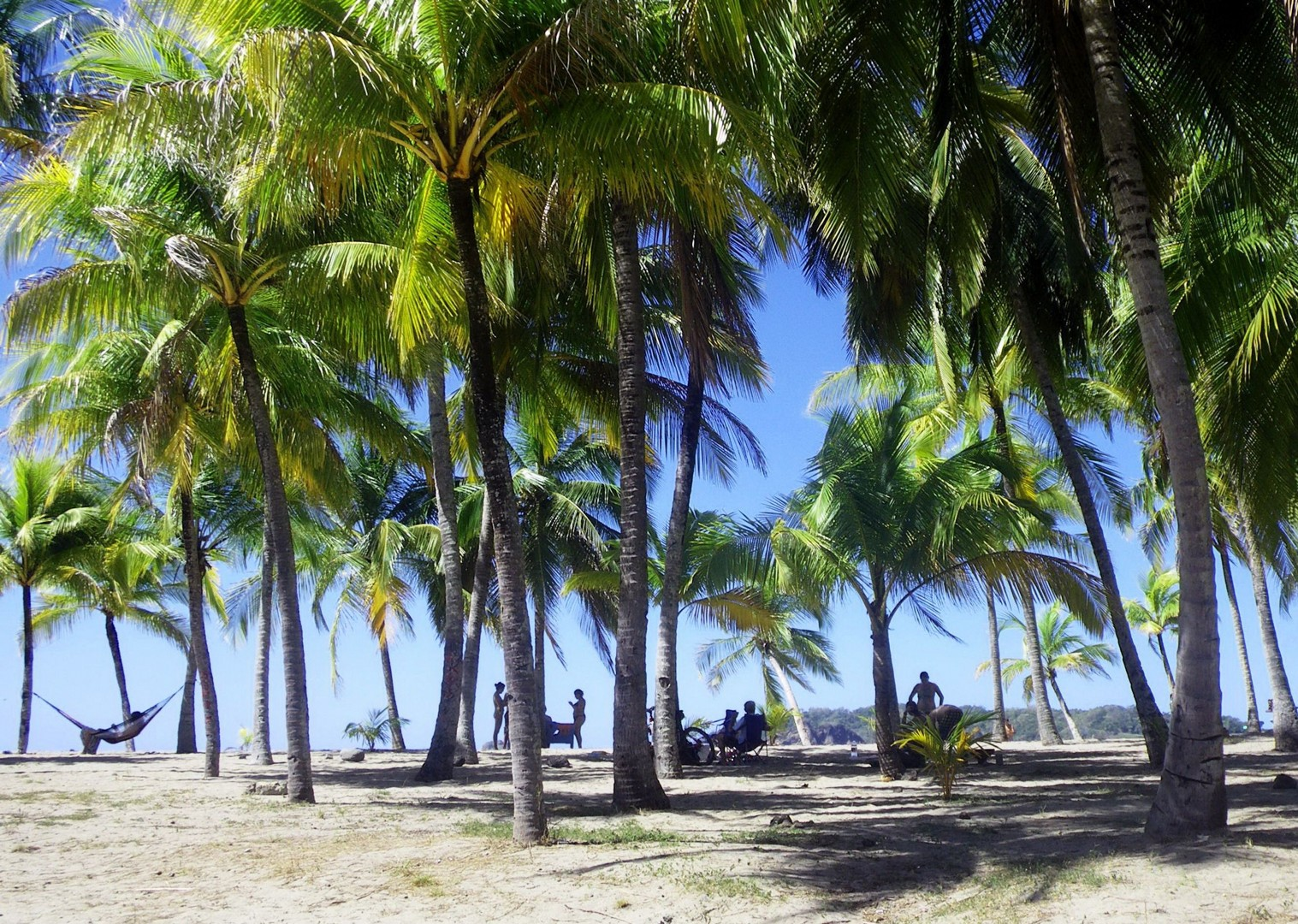 costa-rica-beach-central-america-family-cycling-holiday.jpg - Costa Rica - Volcanoes and Valleys - Guided Family Cycling Holiday - Family Cycling