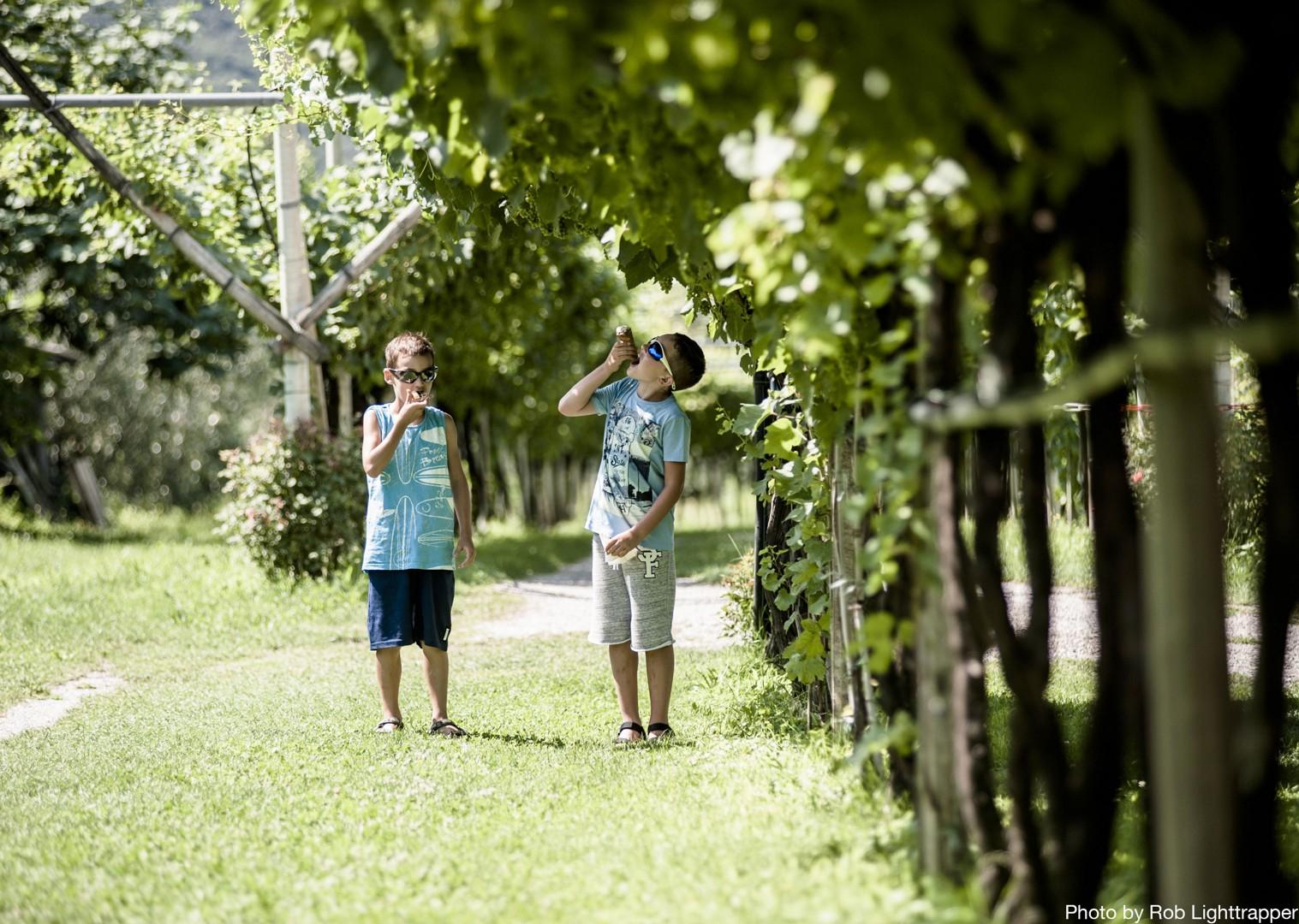 family-cycling-holiday-in-italy-la-via-claudia.jpg - Italy - La Via Claudia - Self-Guided Family Cycling Holiday - Family Cycling