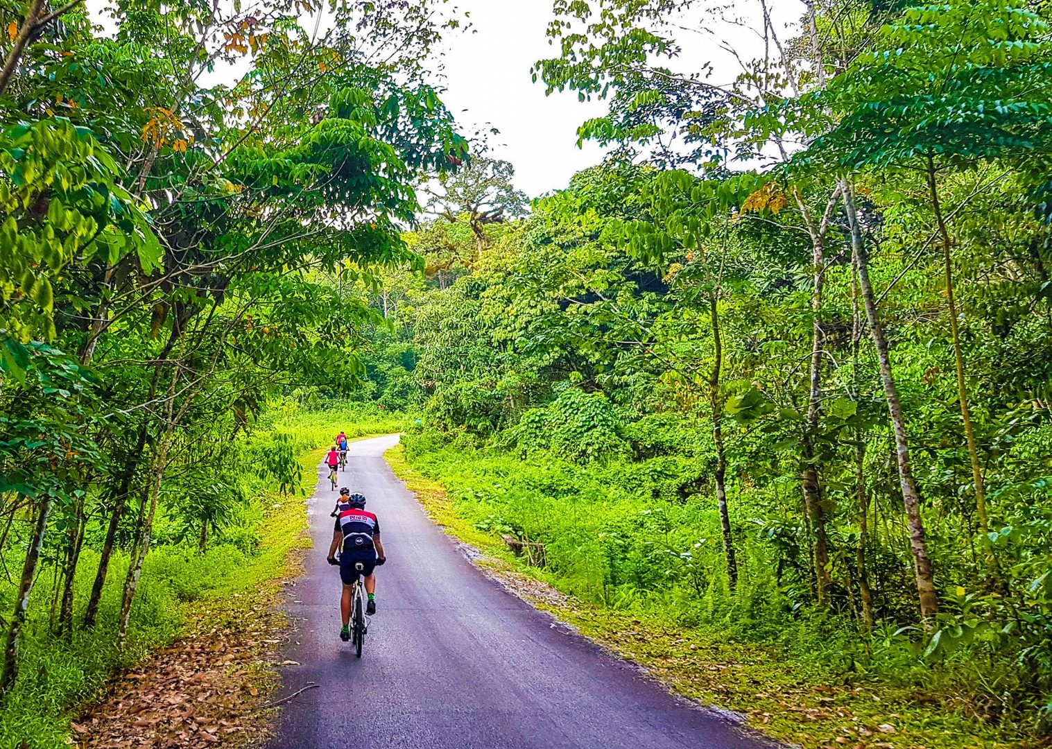 saddle-skedaddle-borneo-guided-family-cycling-holidays-long-haul-riding.jpg - NEW! Borneo - Sarawak Jungle Adventures - Family Cycling